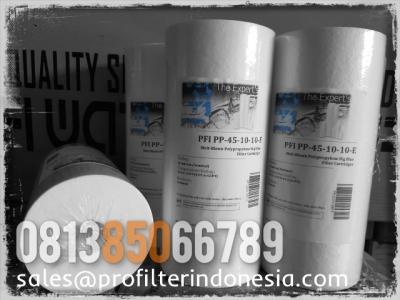 https://laserku.com/upload/PFI%20PP45%20Big%20Blue%20Cartridge%20Filter%20Indonesia_20200520213304_large2.jpg