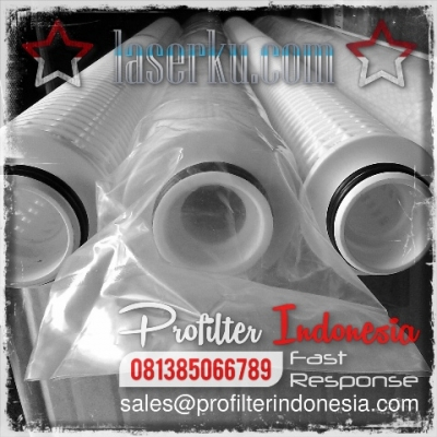 http://laserku.com/upload/PFI%20Twin%20Filter%20Cartridge%20Indonesia_20200622223336_large2.jpg
