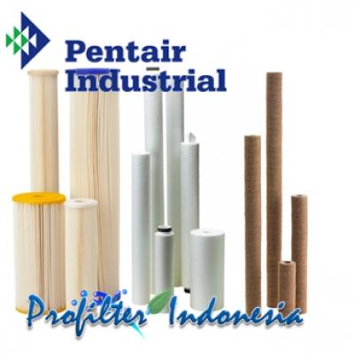 https://laserku.com/upload/Pentair%20Cartridge%20Filter%20Indonesia_20190225140954_large2.jpg